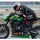 GBRacing Limadeckelschoner Kawasaki Z900 2017-->